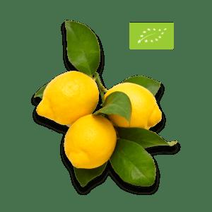 Citroner med blade