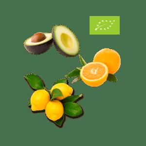 Økologisk avocado, appelsiner, citroner med blade