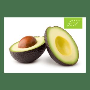 Store økologiske Hass avocadoer fra Greenmate
