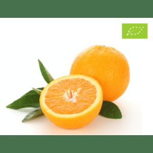 økologisk appelsin